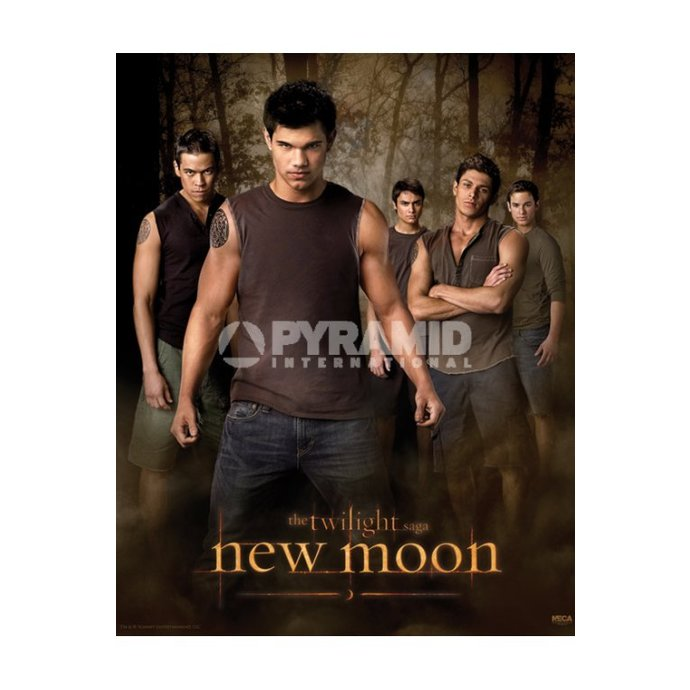 poszter Twilight - New Moon (Wolf Pack) - MPP50303