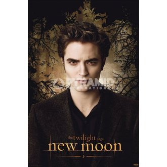 poszter Twilight - New Moon (Edward Trees) - PYRAMID POSTERS - PP32011