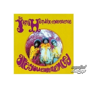 bábu (3D kép) JIMI HENDRIX are you experienced plaque Figure, Jimi Hendrix