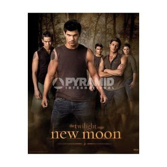 poszter Twilight - New Moon (Wolf Pack) - MPP50303 - PYRAMID POSTERS