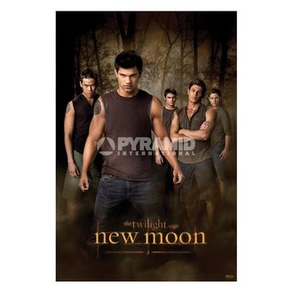 poszter Twilight - New Moon (Wolf Pack) (Alkony) - PP32065 - PYRAMID POSTERS