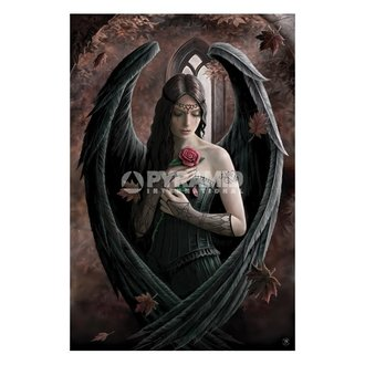 poszter Anne Stokes (Angel Rose) - PP32093 - PYRAMID POSTERS